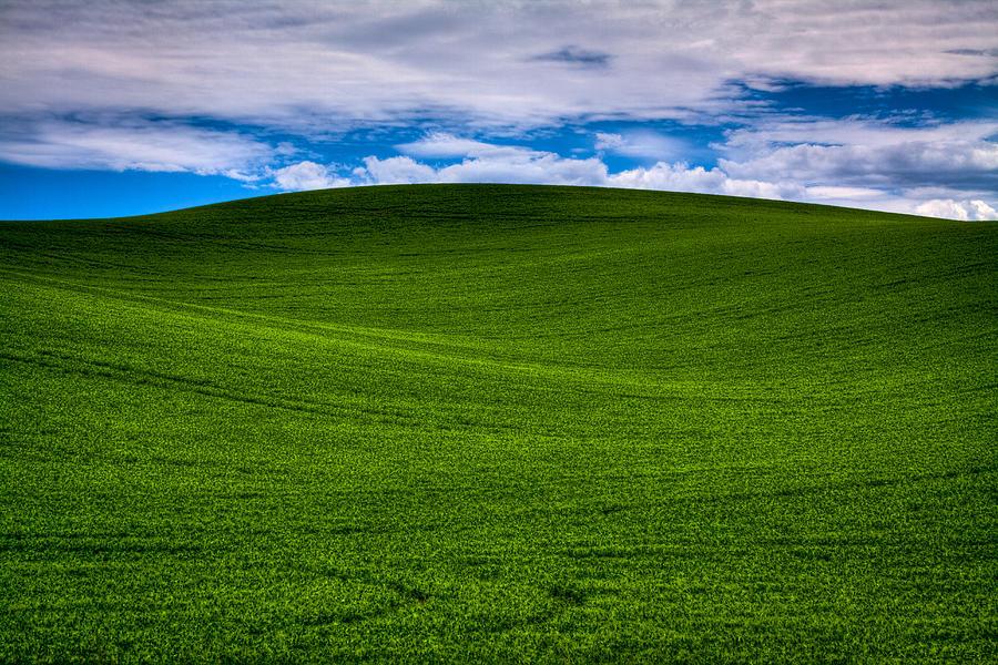 Rolling Hills rollingh...